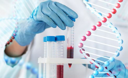 Molecular Biology Services in Mitosis IVF Clinic Greece